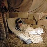 ひっそりと生きているシャーラのクリスマス・クリブ