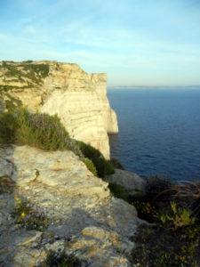 Snap cliffs スナップクリフ