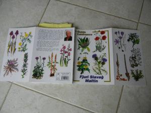 マルタの野生植物図鑑